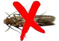 pest control devon
